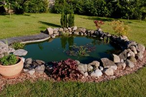 10 Ways To Decorate Your Pond