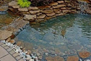 7 Pond Edging Ideas