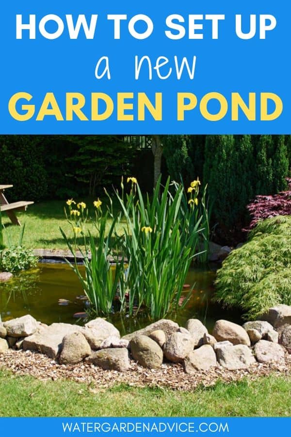setting up a new garden pond