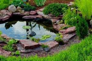 Using Rocks In Pond Design