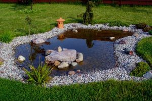 15 Small Backyard Pond Ideas
