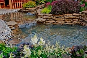 How To Keep Pond Water Clear