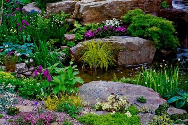 natural garden stream