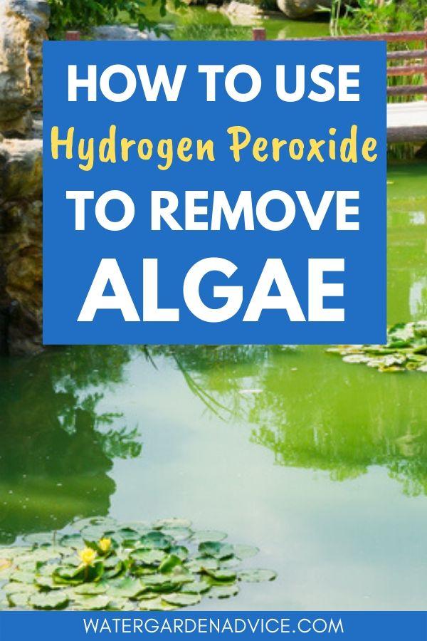 hydrogen peroxide for pond algae