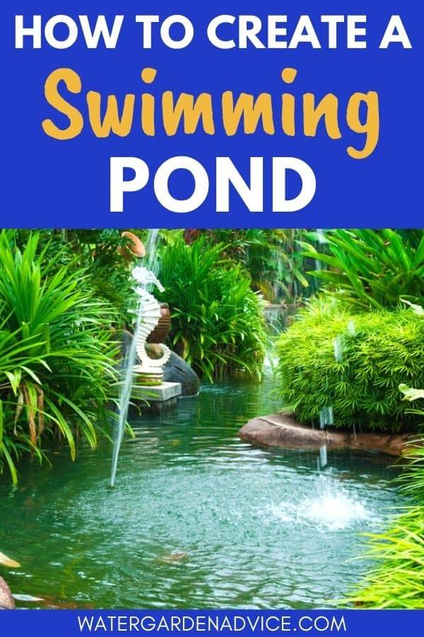 building a swim pond