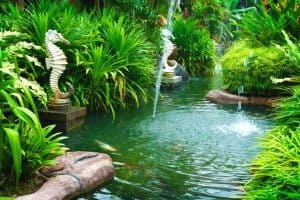 Read more about the article How To Create A Natural Swimming Pond