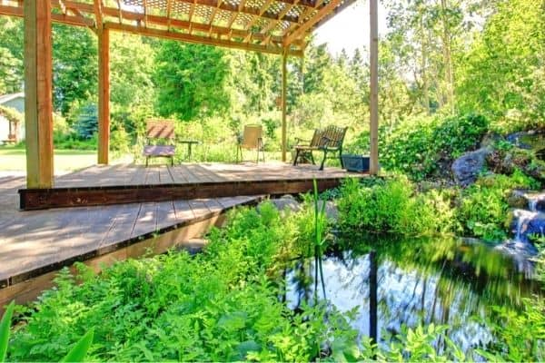 Read more about the article 5 Backyard Pond Cover Ideas