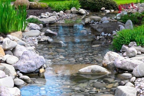 pond overflow area